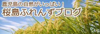 鹿児島の自然がいっぱい!桜島ふれんずブログ