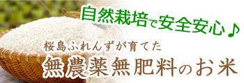自然栽培で安全安心♪桜島ふれんずが育てた、無農薬無肥料のお米