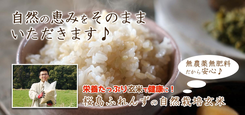 自然の恵みをそのままいただきます♪栄養たっぷり玄米で健康に!桜島ふれんずの無農薬、無肥料玄米