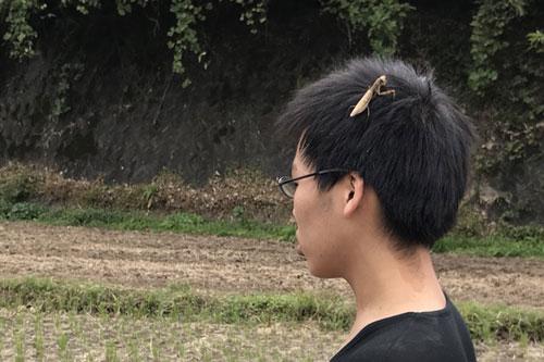 作業中の桜島ふれんずメンバーの頭にとまったカマキリ