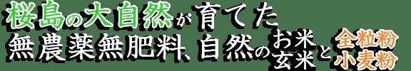 桜島の大自然が育てた、無農薬無肥料、自然のお米・玄米と小麦粉・全粒粉をあなたに