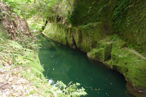 透明な水が流れる渓谷