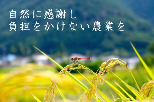 自然に感謝し、負担をかけない農業を
