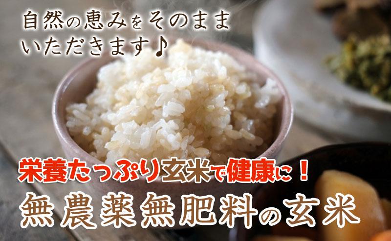 自然の恵みをそのままいただきます♪栄養たっぷり玄米で健康に!無農薬無肥料の玄米。