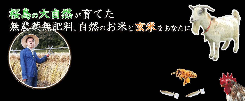 桜島の大自然が育てた、無農薬無肥料、自然のお米と玄米をあなたに