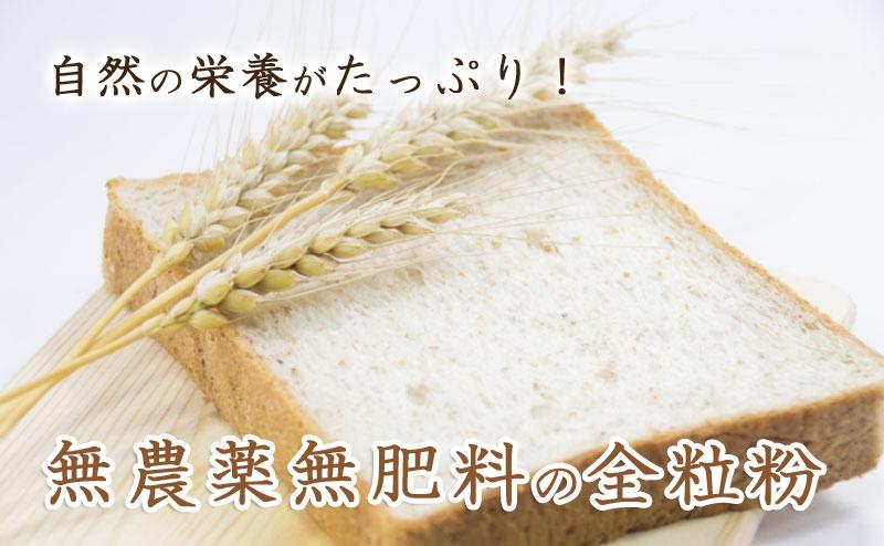 無農薬無肥料、元気に育った小麦から作りました。小麦の香りが濃厚です。パン作りやお菓子作りにどうぞ♪無農薬無肥料の小麦粉。