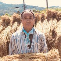 自然栽培米を食べて病気を克服する